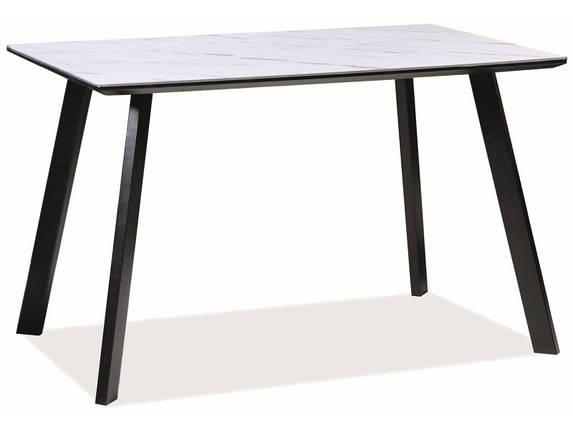 Стол обеденный Samuel 120 * 80, фото 2