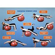Мяч для фитнеса (фитбол) Profi Ball - 75 см голубой M 0277 1, фото 4