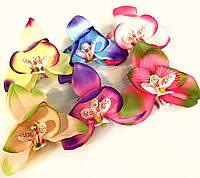 Краб Орхидея с камушками
