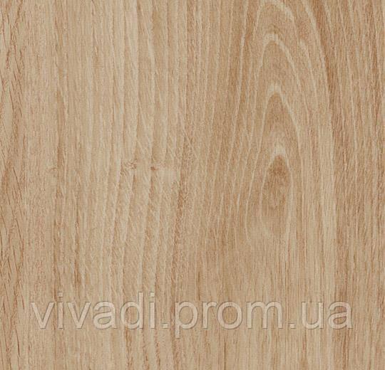 Allura Decibel акустична версія-honey authentic oak