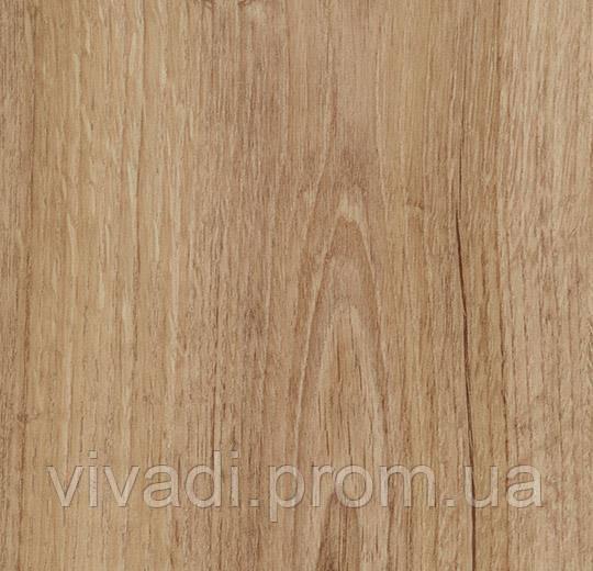 Allura Decibel акустична версія- classic authentic oak