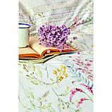 Комплект постельного белья Karaca Home ранфорс евро размер Reveal somon, фото 3