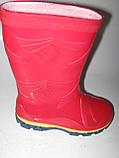 Резиновые сапоги детские Litma, фото 2