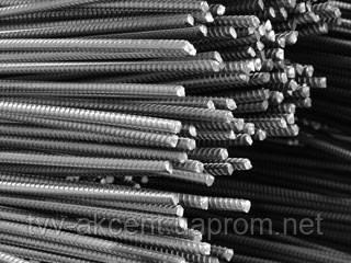 Арматура 12 мм,мера,12м, ДСТУ 3760-06