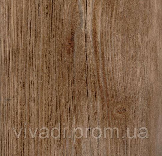 Effekta Standard- Golden Pine ST