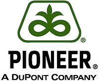 Семена кукурузы Пионер ПР38Н86/ PR38N86 (ФАО 320)