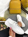 Женские кроссовки кеды из натуральной кожи, дышащая перфорация, пудра, белые, бежевые, фото 6