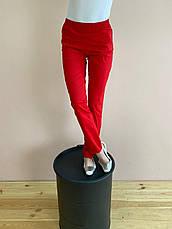 Штаны медицинские Слимс. Красный. Стрейч легкий. Саталь, фото 2