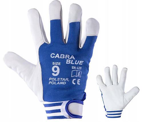 Перчатки рабочие кожаные POLSTAR CABRA BLUE 10, фото 2
