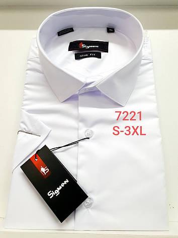 Однотонная белая рубашка с коротким рукавом  Sigmen 7221, фото 2