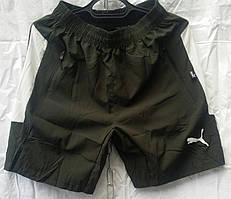 Мужские шорты норма (плащевка)(пошив- Украина) (46-54р-р)оптом со склада в Одессе.