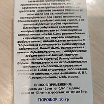 Гриб Лисичка порошок Фунгодоктор , 10 г, фото 3