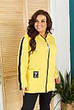 Женский спортивный костюм  с удлиненной кофтой Турецкая двунитка Размер 48 50 52 54 56 58 60 62 Разные цвета, фото 4