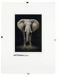 Антирама для фото и документов 10х15 см, оргстекло