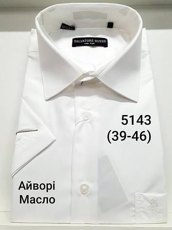 Однотонная  рубашка с коротким рукавом 5143, фото 2