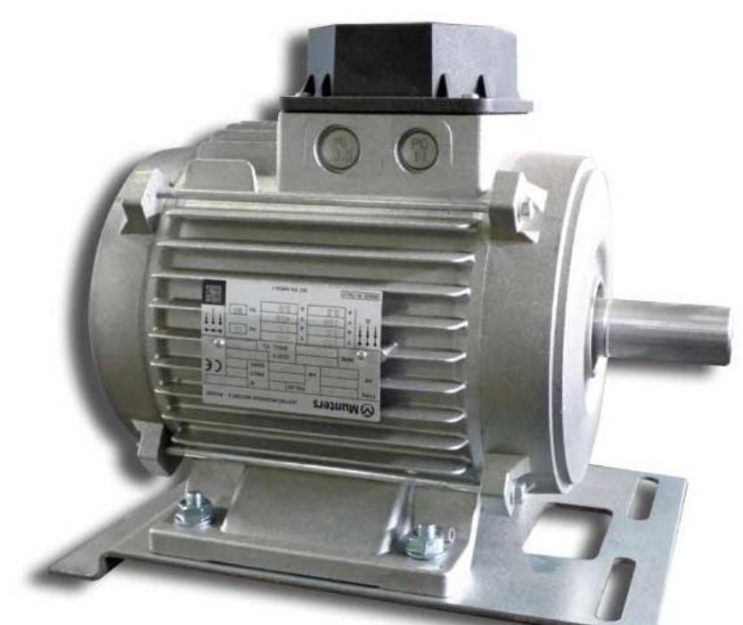 Мотор вентилятора EM50 Big Dutchman