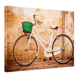 Картина на полотні 45х65 Велосипед (H4565_STV001)