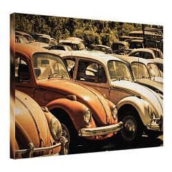 Картина на полотні 45х65 Фольксваген Beetle (H4565_STV006)