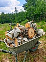 Заготівля дров.