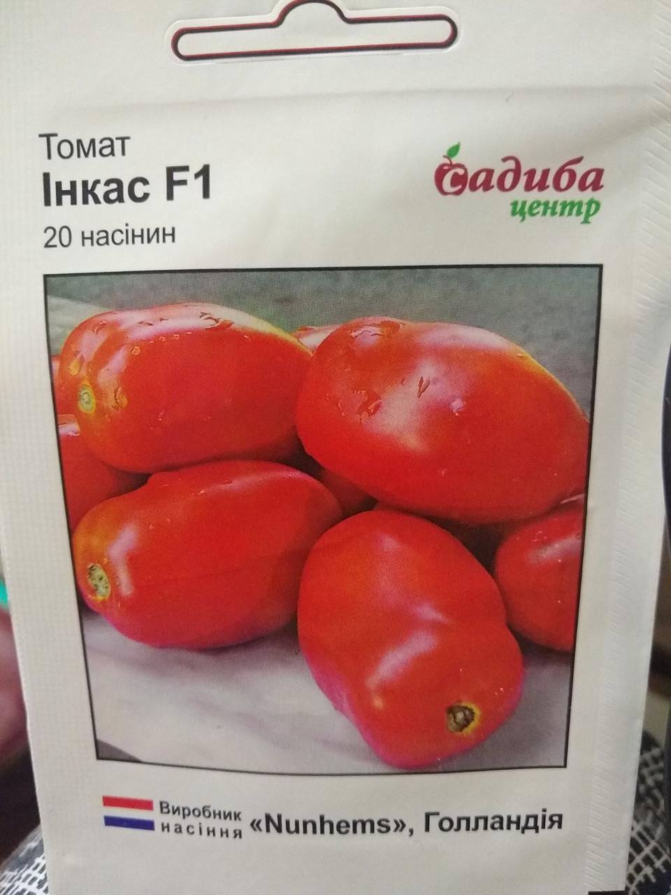 Насіння томату раннього кущового гібрида среднерослого тип сливка Інкас F1 20 насінин Nunhems Голландія