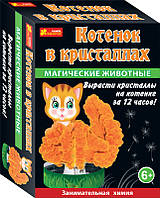 Набор для опытов 0264 «Магические животные. Котик в кристаллах»