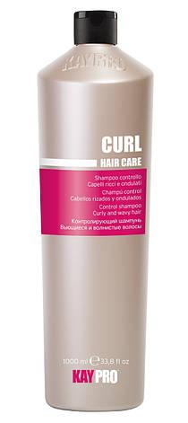 Шампунь для вьющихся волос Kay Pro Curl 1000 мл, фото 2