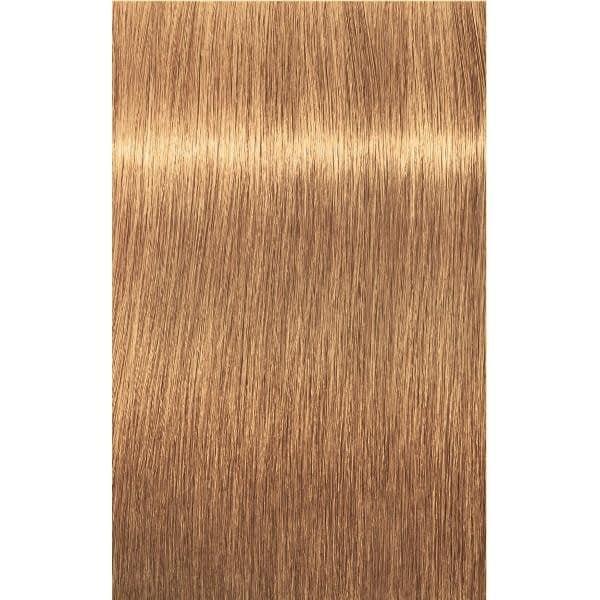 Краска для волос 9-50 Schwarzkopf Igora Royal Absolutes Экстра светлый блондин золотистый натур. 60 мл