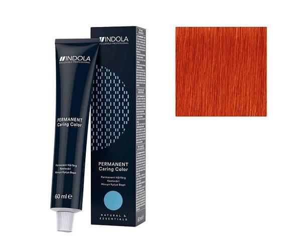 Крем-краска 9.44 Indola PCC Блондин интенсивный медный 60 мл, фото 2