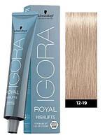 Краска для волос 12-19 Schwarzkopf Igora Royal специальный блондин сандре фиолетовый 60 мл