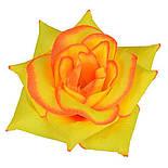 Роза  Белла, 14 см (32 шт.в уп.), фото 6