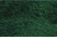 367 Шерсть меринос Украина (23 микрон) 50г.(т.зелёный)