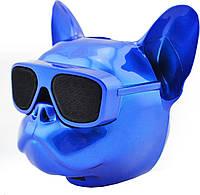 Колонка музыкальная блютуз с подсветкой Cool Dog синяя