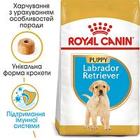 Корм для щенка лабрадор ретривер ROYAL CANIN Labrador Retriever Puppy  3 кг