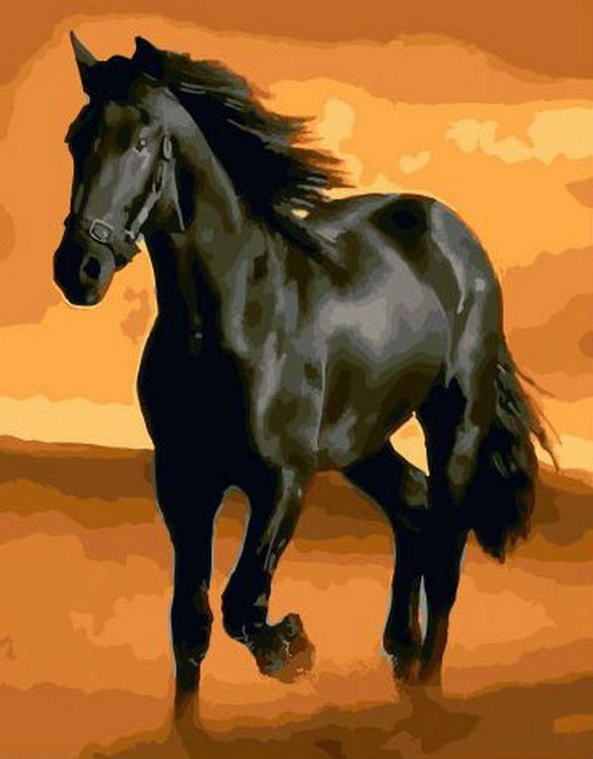 """Картина по номерам.""""Чёрный конь"""""""