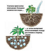 Гидрогель для цветов и растений, крупная фракция, 1 кг