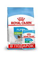Royal Canin X-Small Puppy 1,5 кг + 3 пауча - корм для щенков миниатюрных пород