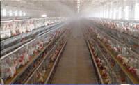 Туман Микрооросители для животноводства увлажнение охлаждение система комплект производства
