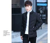 Чоловіча весняна куртка. Модель 61840., фото 3