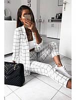Женский стильный брючный костюм в клетку с пиджаком 3 цвета С, М +большие размеры
