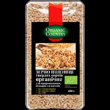 Зерно пшениці твердих сортів для пророщування ТМ Organic Сountry