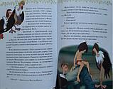 Книга для детей Книга джунглей. Отважные друзья, фото 4