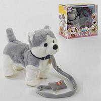 Интерактивная игрушка собачка хаски поет и танцует