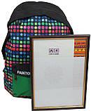 Молодежный рюкзак PASO 12L, 00-220PAN разноцветный, фото 5