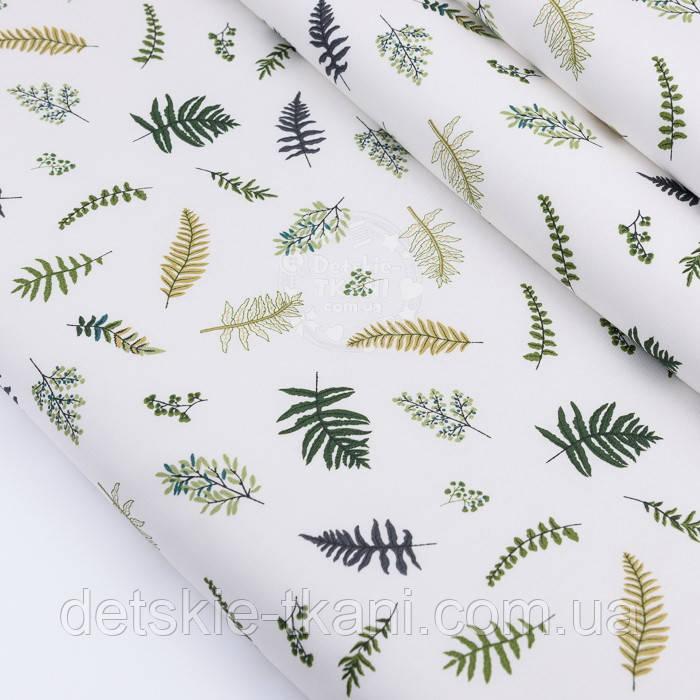"""Сатин ткань """"Маленькая зелёная папороть"""" на белом, №2770с"""