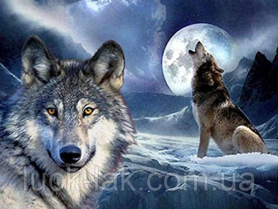 Алмазная вышивка волки 30х40 см, полная выкладка