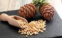 Кедровые орехи 30 грамм, фото 1