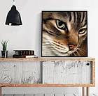 Алмазная вышивка котик 25х25 см, полная выкладка, квадратные стразы, фото 2