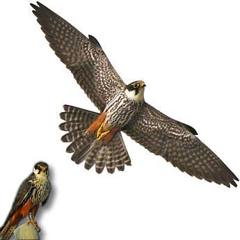 Візуальній відлякувач птахів ЕкоБерд Чеглок