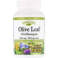 Экстракт Оливковых Листьев, Olive Leaves, Natural Factors,  500 мг, 90 капсул