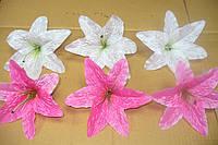 Головка лилия крупная, фото 1